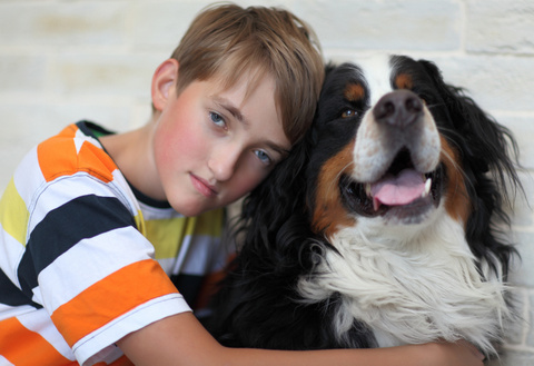 Empathy and animals