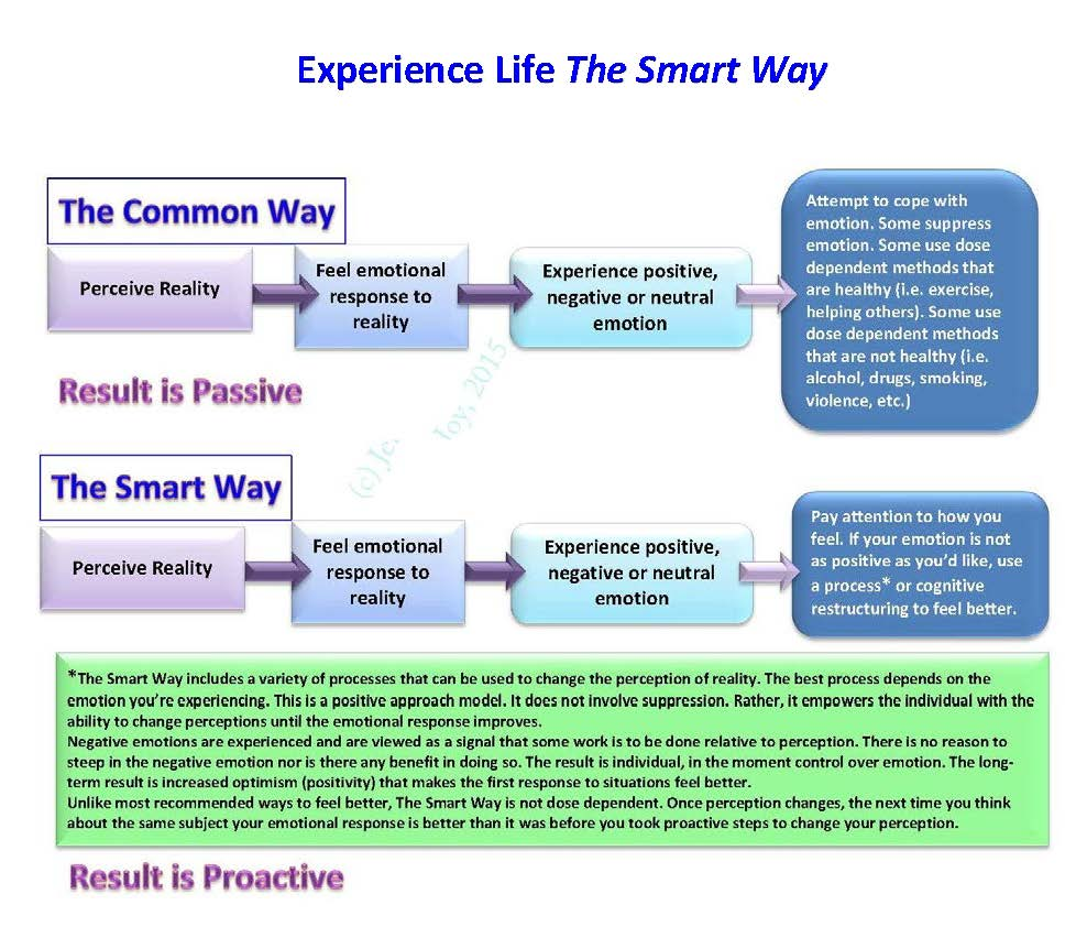 Experience Life The Smart Way
