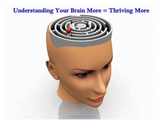Understand Your Brain More = Thrive More